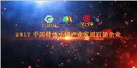 """华通国际荣膺""""2017中国特色小镇产业发展百强企业""""称号"""